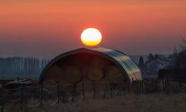 在干草的日落 免版税库存照片