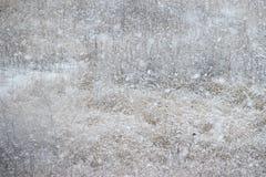 在干草的树冰在草甸 弗罗斯特盖了草或野花 背景蓝色雪花白色冬天 第一霜在乡下 图库摄影