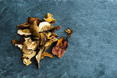 在干蘑菇的特写镜头在石基体 库存图片