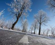在平原的冬天路 库存图片