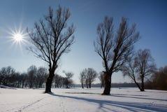 在平原的冬天风景 免版税图库摄影