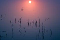 在平安的死水的日出 免版税库存照片