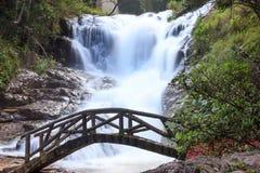 在平安的Datanla瀑布前面的一座美丽的桥梁,大叻,越南,亚洲 库存照片
