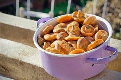 在平底锅的乳菇属 免版税库存图片