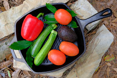 在平底锅的新鲜的有机庭院菜在石头 图库摄影