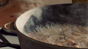 在平底锅的煮沸的蘑菇 股票视频