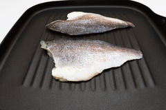 在平底锅的鱼 库存图片