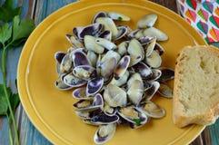 在平底锅的鸟蛤用大蒜和荷兰芹 库存图片