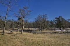 在平的岩石公园的冬天 免版税库存图片