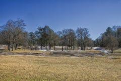 在平的岩石公园的斯诺伊冬天 图库摄影