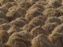 在平直的行的干草堆立场:圆的黄色峰顶,被会集的干草创造在秋天领域的正确几何样式, harve 库存图片