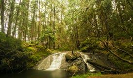 在平静的周围的深森林Gundar瀑布 免版税库存图片