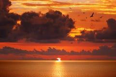 在平静的海上的红色发光的日落 免版税图库摄影