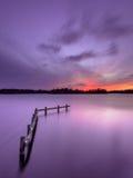 在平静的湖的紫色日落有木停泊岗位的 免版税图库摄影