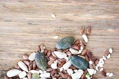在年迈的木头的混杂的种子当食物背景或纹理 免版税图库摄影