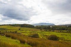 在幽谷半岛,爱尔兰的惊人的风景 免版税库存照片
