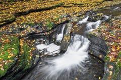 在幽谷的秋天颜色 库存照片