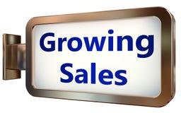 在广告牌背景的生长销售 向量例证