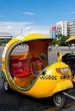 在广场de la Revolucion,哈瓦那的椰树出租汽车 库存图片