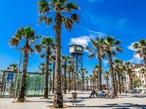 在广场Del Mar的棕榈在巴塞罗那 免版税库存照片