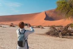 在庄严沙丘围拢的风景结辨的金合欢树的旅游采取的照片在Sossusvlei,纳米比亚沙漠, Namib Naukluft N 免版税库存图片