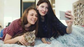 在床上和做与猫的两个愉快的妇女朋友selfie和在家获得在床上的乐趣 图库摄影