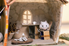 在床上的小的滑稽的仓鼠在小想象得在家 库存照片
