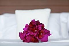 在床上的紫色兰花婚礼花束 免版税库存照片