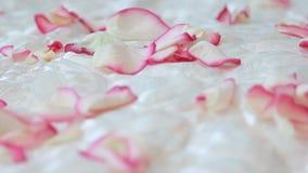 在床上驱散的玫瑰花瓣 照相机在他附近移动 影视素材