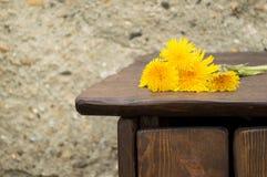 在床头柜边缘的黄色蒲公英谎言 库存照片