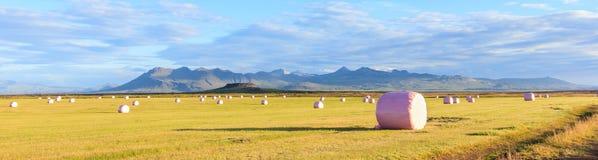 在库存的桃红色塑料胶膜的干燥干草捆在冬天季节与五颜六色的山作为背景 免版税库存照片