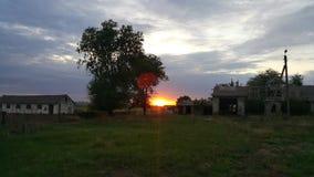 在废墟中的金黄日落 在向日葵以后的领域的日落 库存图片