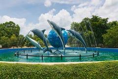 在度假的公园和水族馆。 免版税库存照片