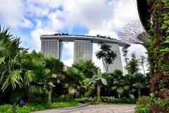 在庭院上的毫华旅馆由海湾 免版税库存照片