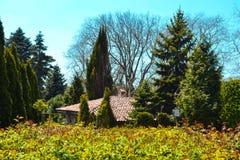 在庭院中间的房子 免版税库存照片