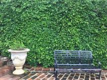 在庭院和植物罐的一把黑长的椅子 免版税库存照片