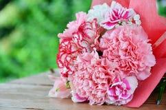 在庭院大阳台的康乃馨花 库存照片