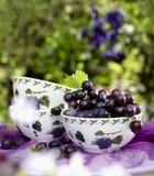 在庭院桌上的水果钵 图库摄影