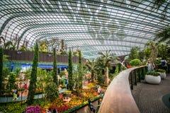 在庭院由海湾,新加坡的花圆顶 免版税图库摄影