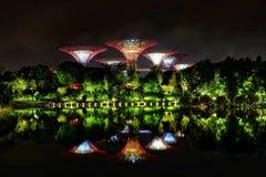 在庭院由海湾,新加坡的超级树凹线 库存图片