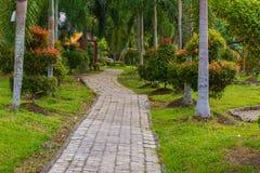 在庭院的一条小道路 免版税图库摄影