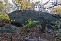 在庭院的大岩石在中央公园,纽约 免版税库存照片