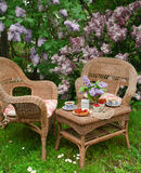 在庭院的早餐 库存照片