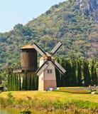 在庭院的涡轮在泰国 免版税图库摄影