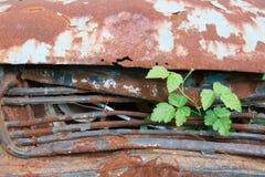 在庭院的老生锈的汽车 免版税库存照片