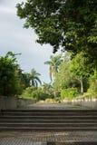在庭院的Stoneway 库存照片