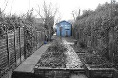 在庭院里上色一个棚子的斑点 免版税库存照片
