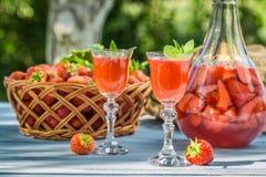 在庭院里供食的自创草莓利口酒 库存图片