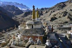 在庭院里面的巨大的古老西藏白色stupa是佛教徒修道院在拉达克,北印度 库存照片