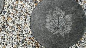 在庭院里阻拦从禅宗样式的被铺的走道圈子白色被雕刻的莲花叶子和沙粒装饰地板的纹理背景 库存照片